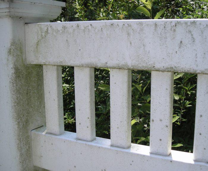 White Vinyl Fence Before Power Washing